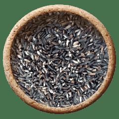 Black Rice - Forbidden Rice - Karuppu Kavuni - Organic Raw Rice